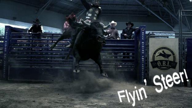 Flyin' Steer!